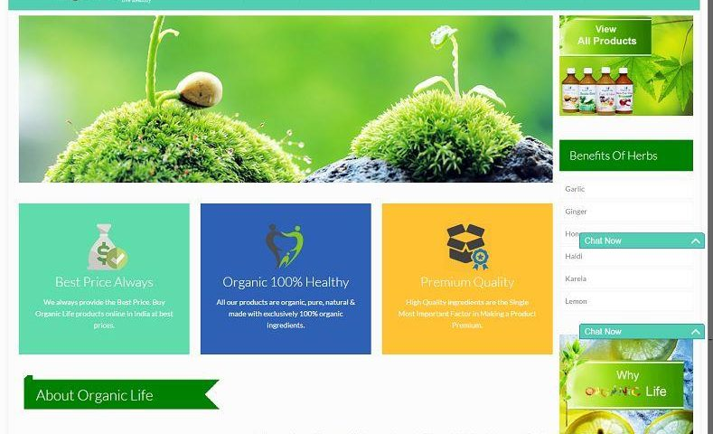 Organic Product Ecommerce Website Design Company