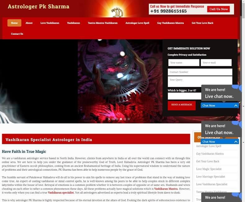 Astrologer Website Design Company
