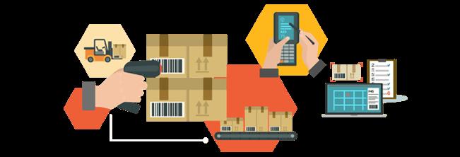 Inventory Software Development in Udaipur